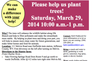 Help us plant trees, March 29