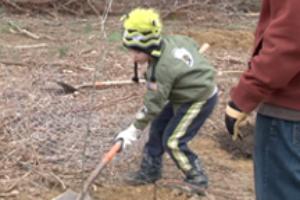 Park Planting & Clean-Up a Success (Video)