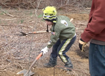 Park Planting & Clean-Up a Success (Video)