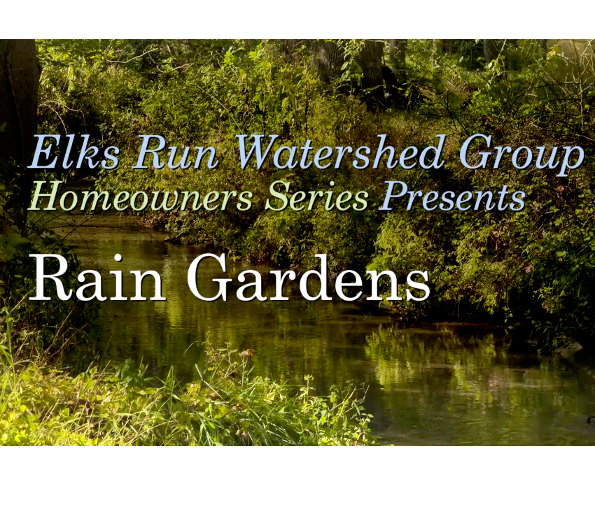 New Conservation Video Series for Homeowners
